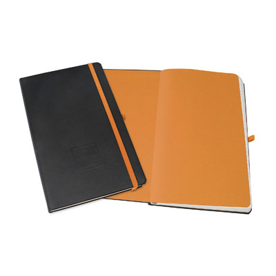 Evolve - Spectra Notebooks
